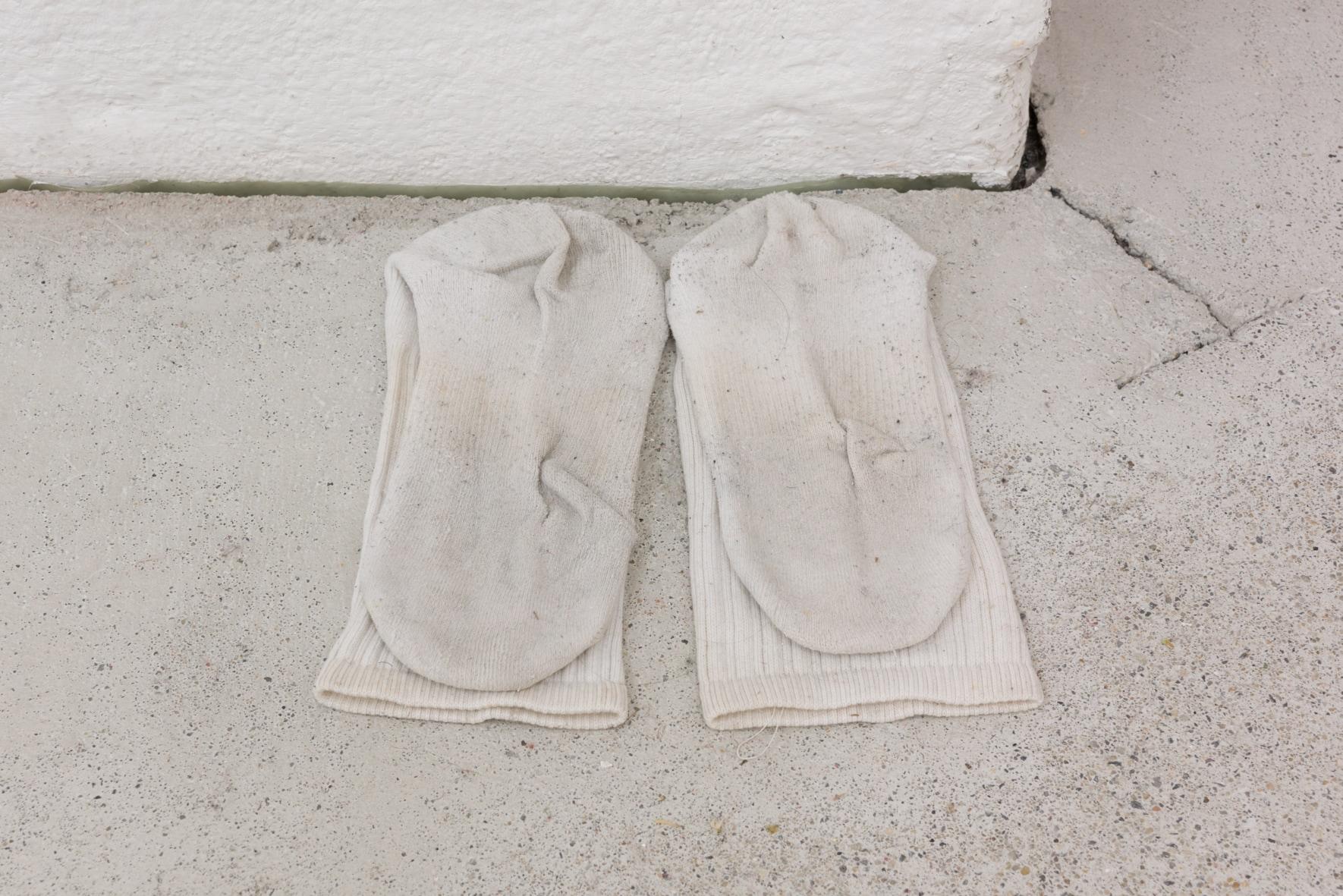Yuu Takamizawa, My socks in Vienna, socks, 2019