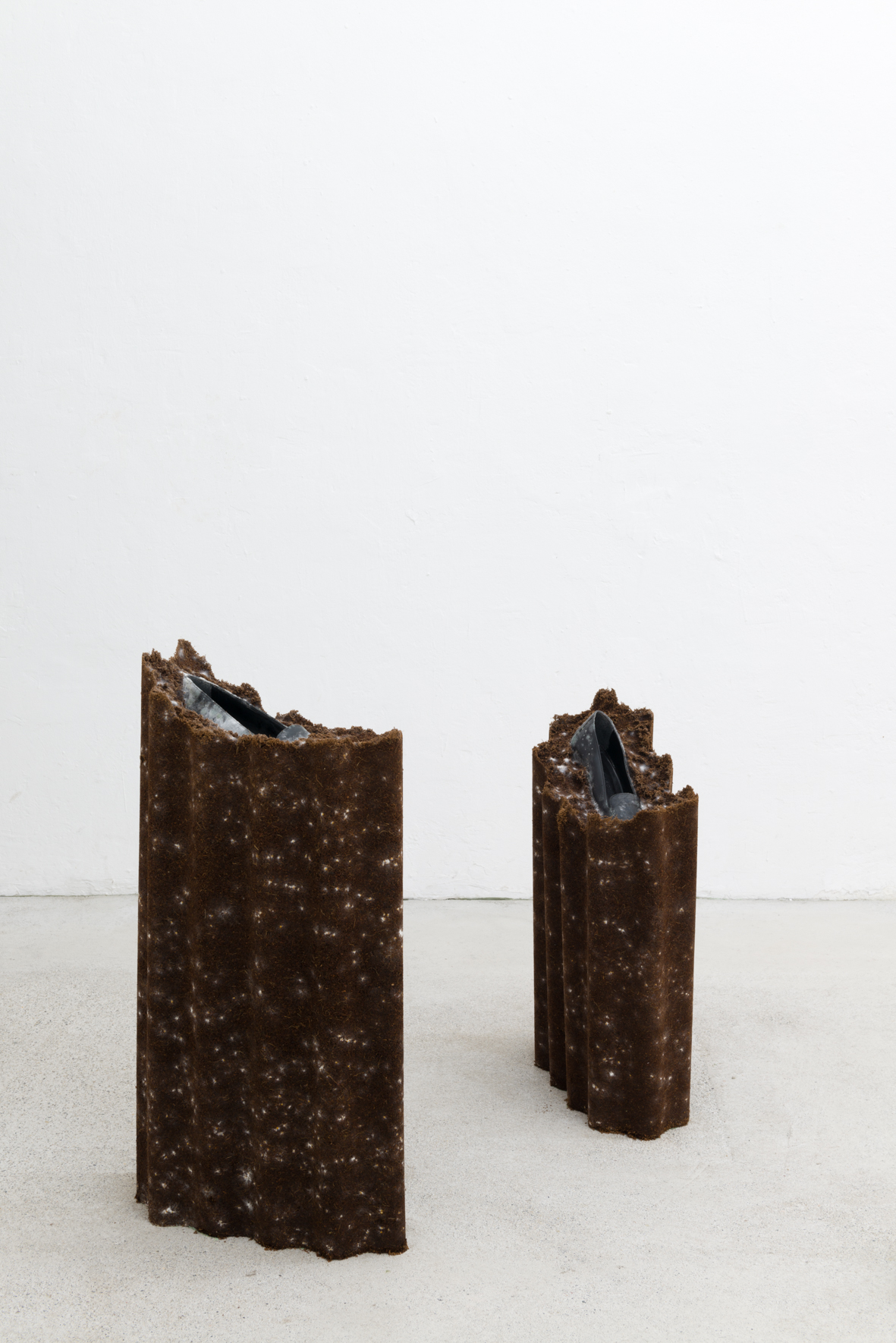 Angelika Loderer: Animate, 2020; coconut substrate, mycelium, leather shoes